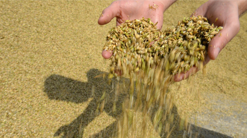 China to import more Russian wheat