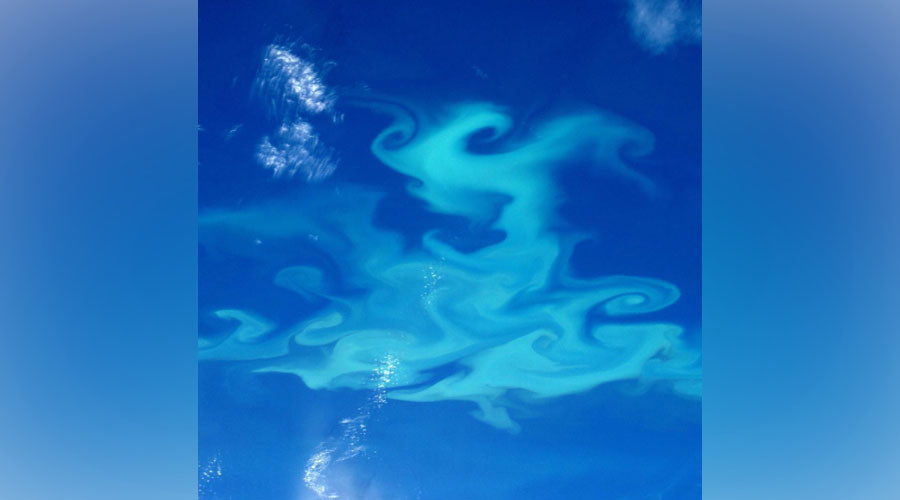 Astronaut Peake snaps monster Patagonian plankton bloom from space (PHOTO)