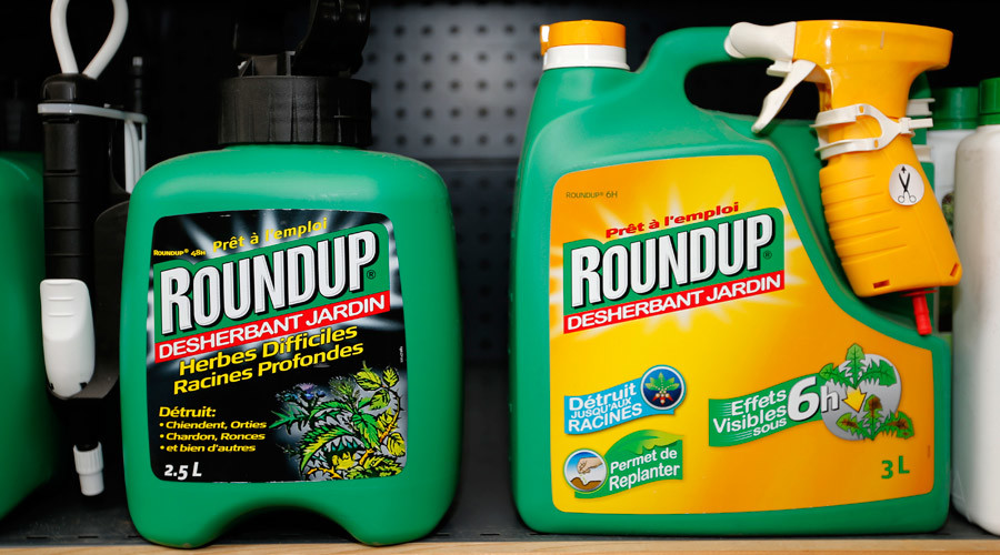 EU parliament votes to re-approve glyphosate despite 'concerns about carcinogenicity'