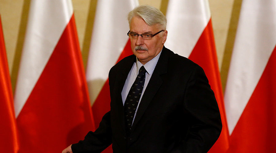Russia more dangerous than 'non-existential ISIS threat' – Polish FM
