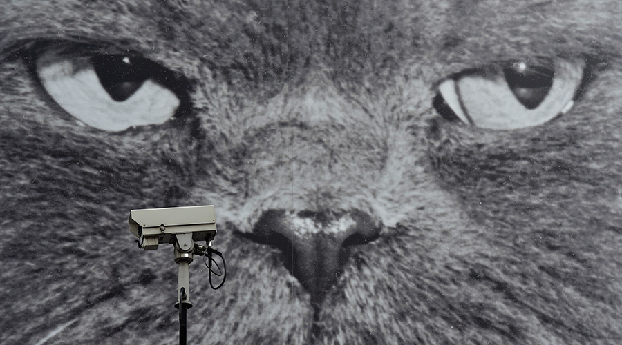 Brits blindly walking into Orwellian surveillance state, survey suggests