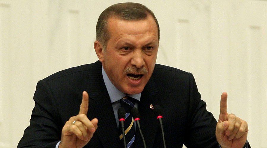 'Journalism in coma, Erdogan controls everything': Gulenist freedoms advocate on Ankara's policies