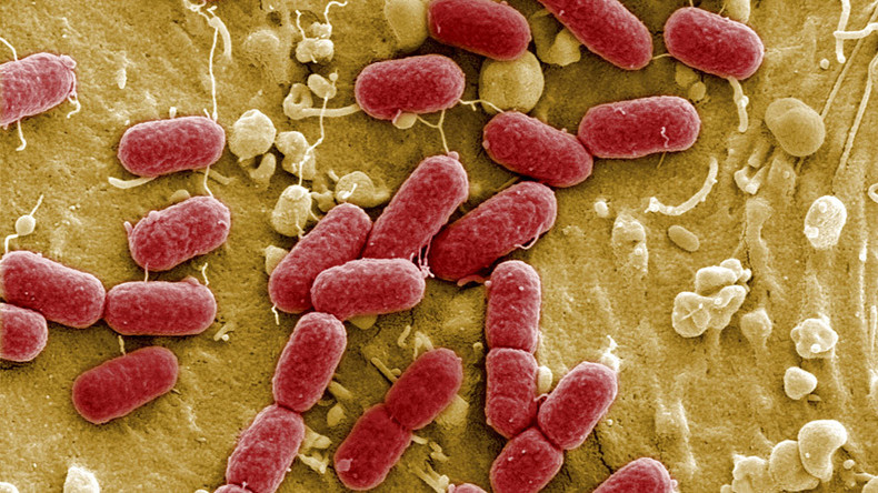 'Antibiotic apocalypse': Drug resistance to kill 10mn in EU & US by 2050, study warns