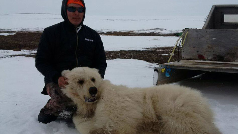 Rare grizzly-polar bear hybrid shot dead in Canada (PHOTOS)