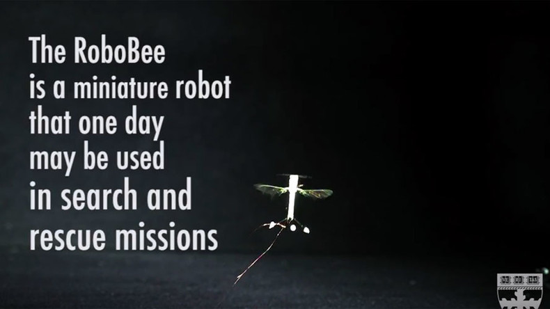 RoboBee: Engineers teach insect drones how to perch on ceiling (VIDEO)