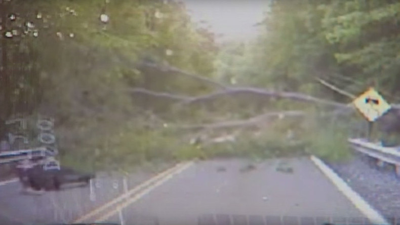 New branch of terror: Police officer downed by fallen tree (VIDEO)