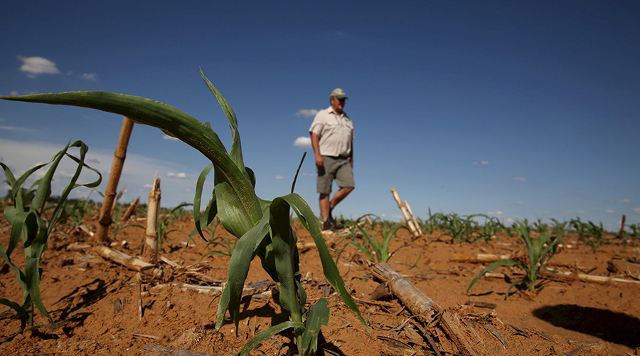 Why South Africa's govt plans to strip land from white farmers