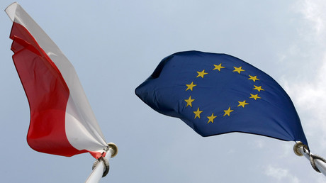 EU 'shouldn't try to be a superstate' says Polish FM