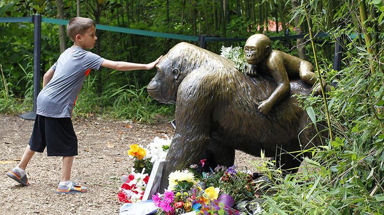 Cincinnati Zoo reopens gorilla enclosure with taller barrier (PHOTOS)