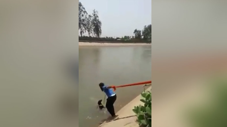 Sikh hero breaches 'turban protocol' to save drowning dog (VIDEO)