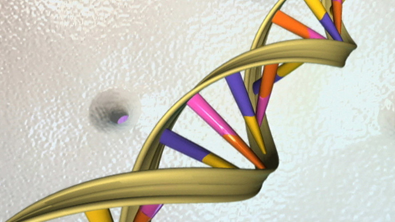 Cues for DNA curl-up inside us just as important as genetic code – study