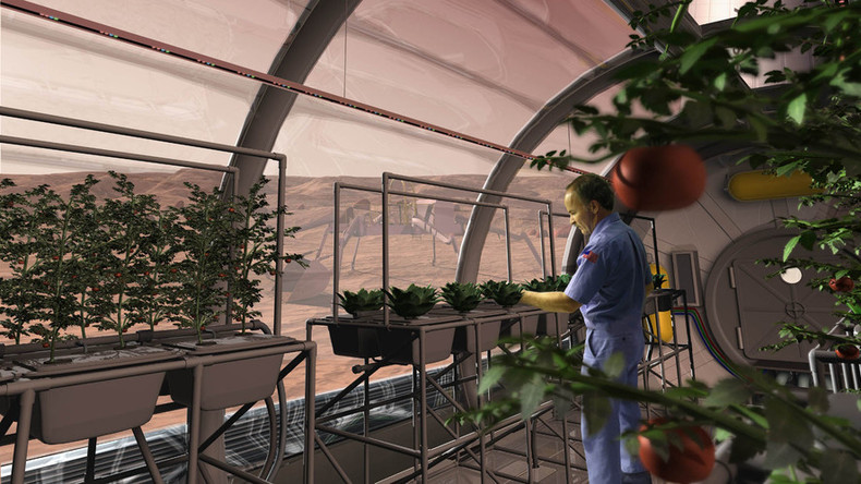 Vegetables harvested on Mars-like soil safe for humans – Dutch scientists