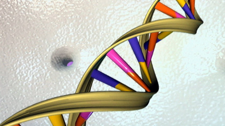 Scientists eye creating synthetic human genomes in lab