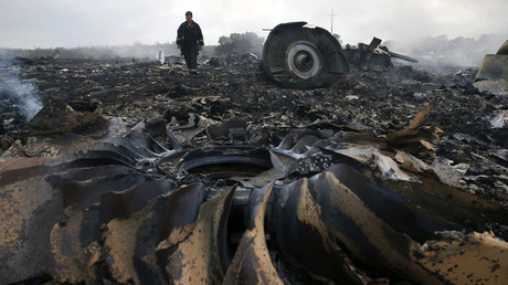 An Emergencies Ministry member walks at a site of a Malaysia Airlines Boeing 777 plane crash near the settlement of Grabovo in the Donetsk region, July 17, 2014. © Maxim Zmeyev