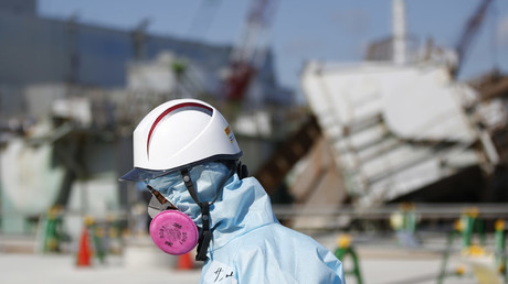 TEPCO admits cover-up of Fukushima meltdown