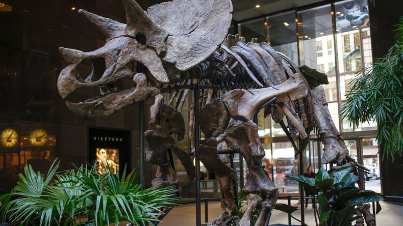 Dinosaurs wiped out when asteroid struck oil, claims study