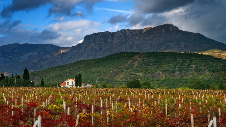French winery wants to invest in Crimea