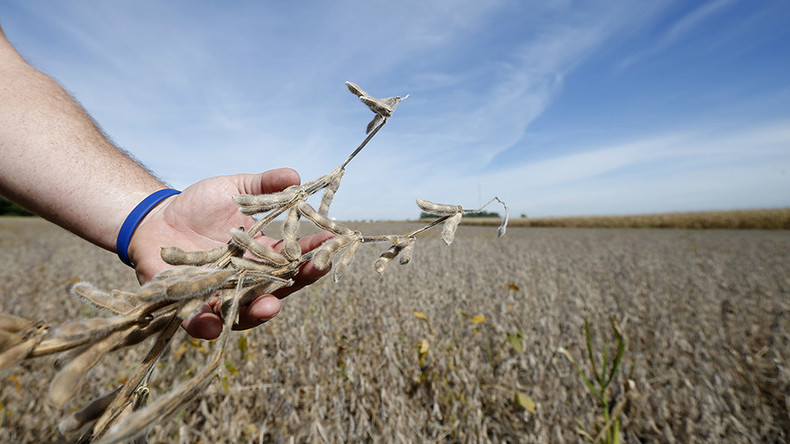 EU approves imports of genetically modified Monsanto soybeans