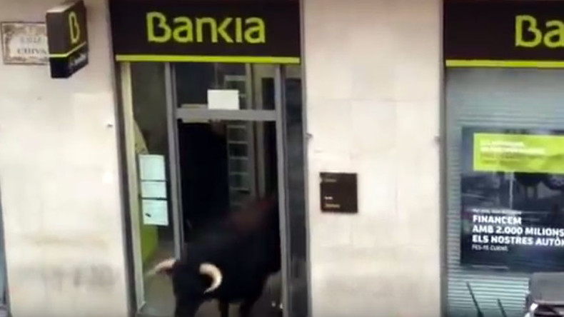Bull-run revenge: Bank ruptured and other great bull-gets-own-back moments (VIDEO)