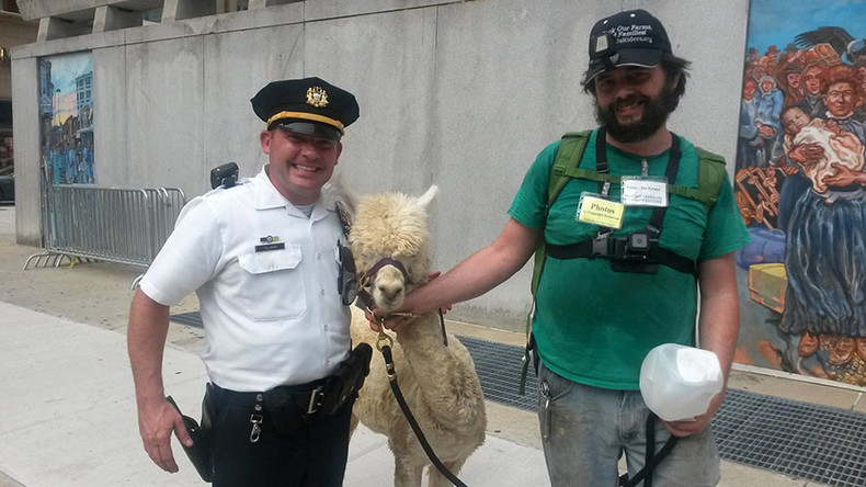 Philly PD clears up Camelidae confusion at DNC protest: It's an alpaca