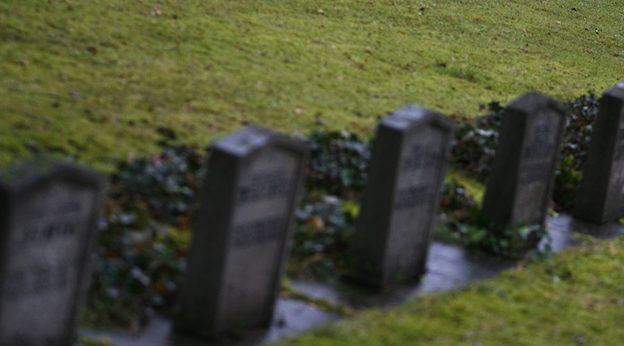 Refugee rapes 79yo woman at German cemetery