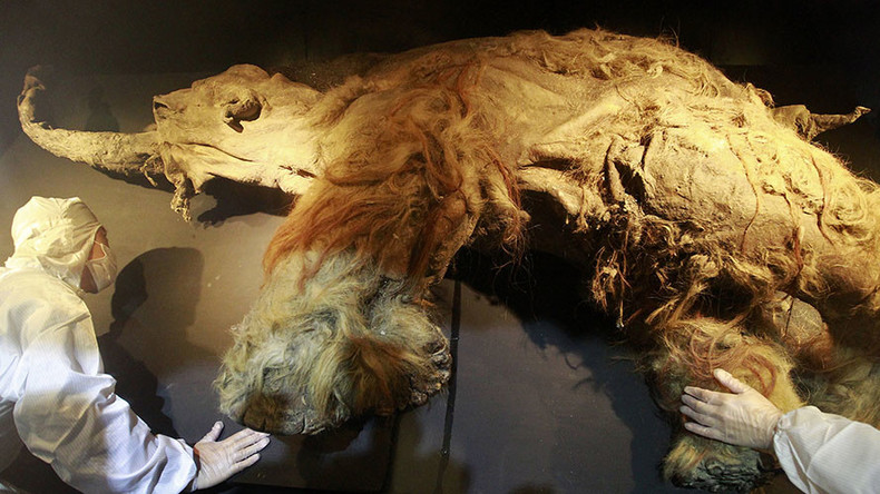 Dying for a drink: Thirst killed last of the mammoths, study finds