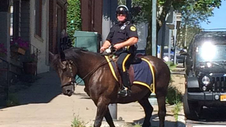 Drive thru? How about trot thru! Police-mounted horse goes on donut break
