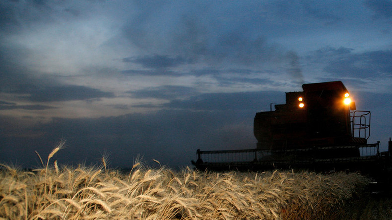 Russia set to become world's biggest wheat exporter