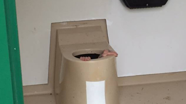 Norwegian man gets stuck in toilet rescuing phone (PHOTOS)