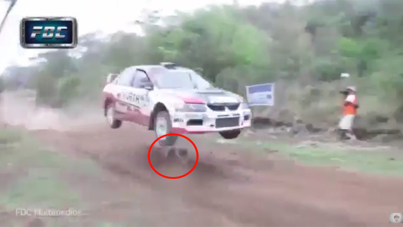 Lucky is as lucky does! Dog has incredible near miss on racetrack (VIDEO)