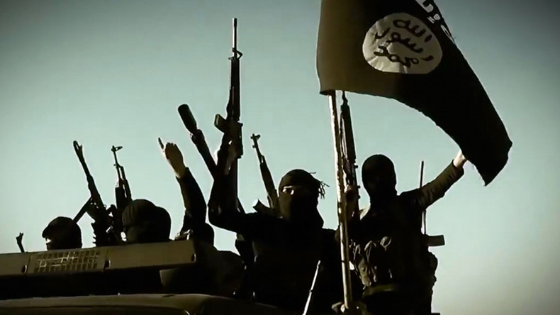 'Islamic State serves positive function in Syria' - Israeli think tank