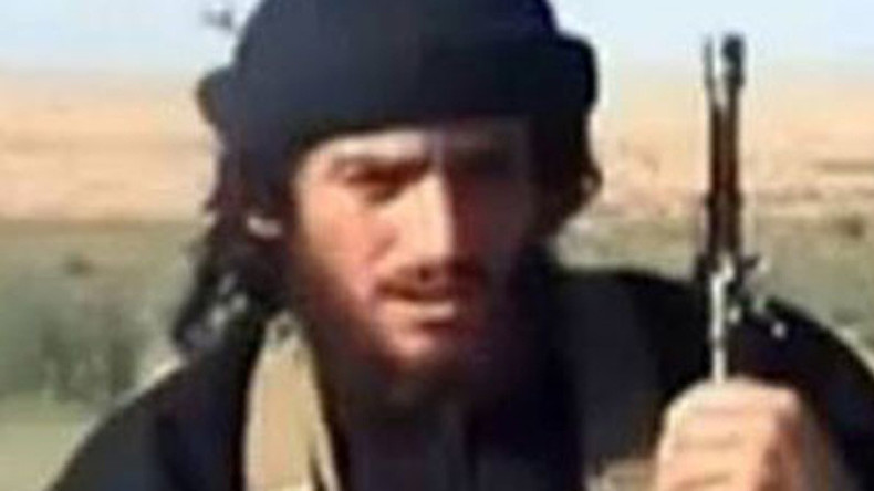 'Russia killing top ISIS leader should compel US to seek bilateral cooperation'