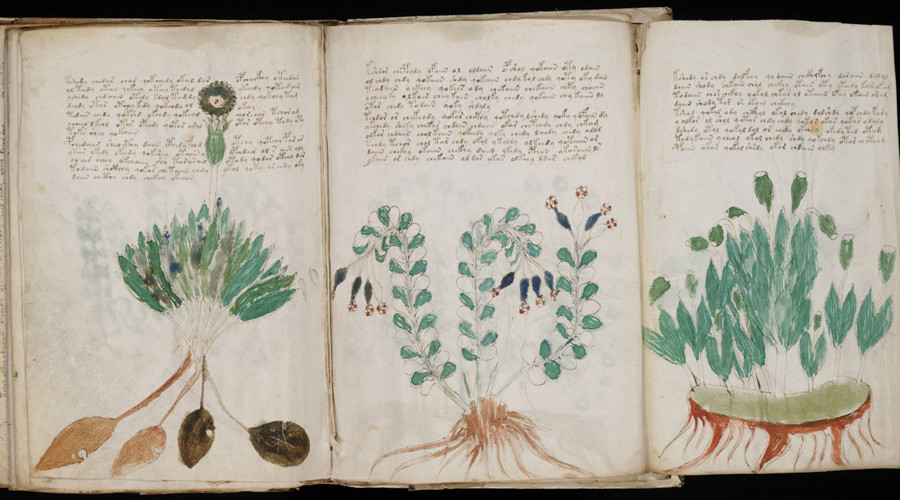 Exact reproductions approved of mysterious 'unbreakable' coded Voynich Manuscript (PHOTOS)