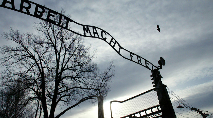 Body parts and brains from gruesome Nazi experiments discovered
