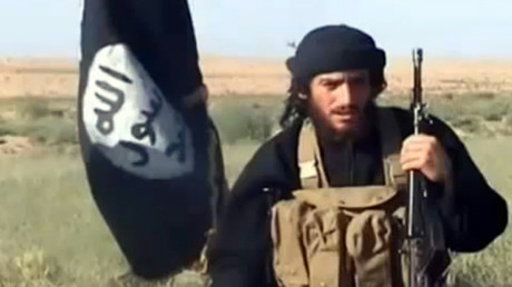 IS spokesman and head of external operations Abu Muhammad al-Adnani © AFP
