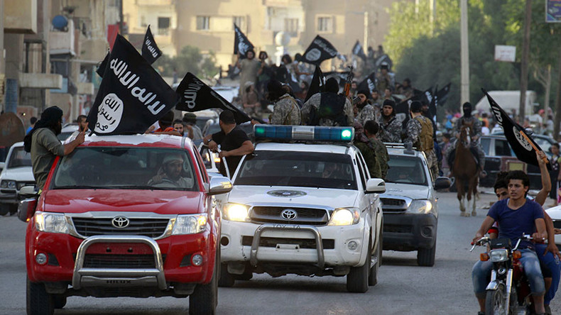 Turkey ready to join US in assault on ISIS' Syrian capital Raqqa – Erdogan