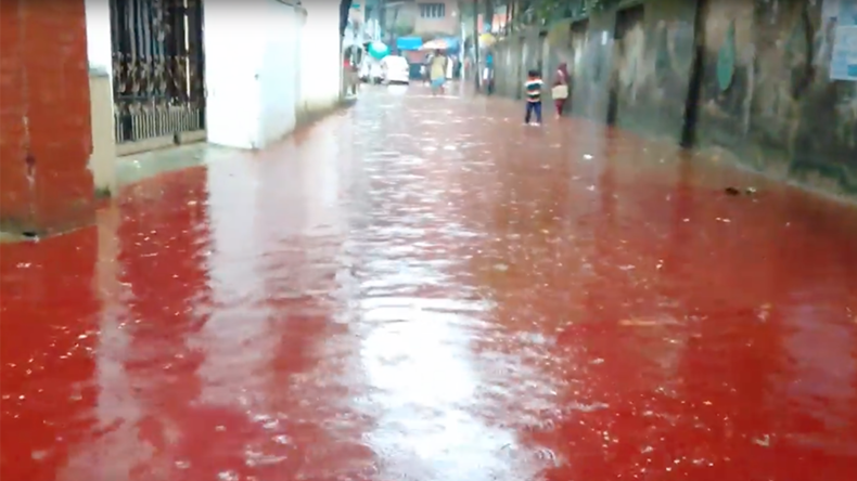 Rivers of blood: Streets of Dhaka turn red after Eid animal sacrifices (PHOTOS, VIDEO)