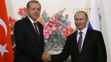 'Path to normalization': Putin and Erdogan talk partnership at G20 summit