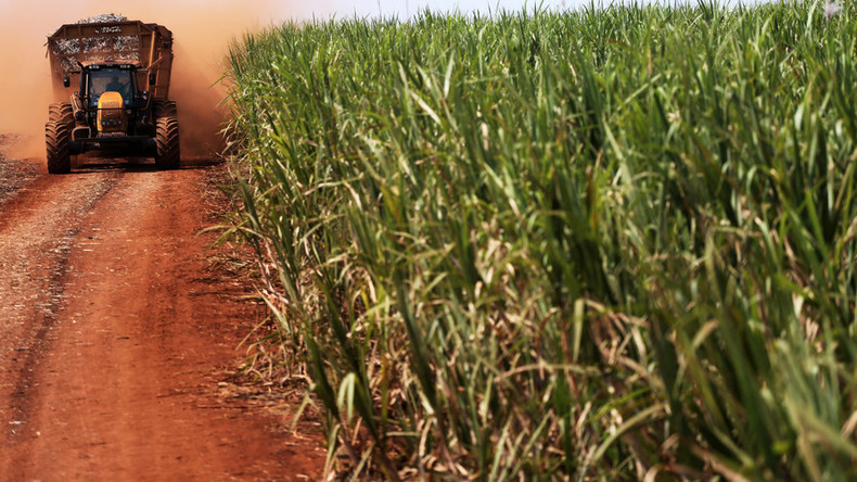 World food prices soar to 18-mth high