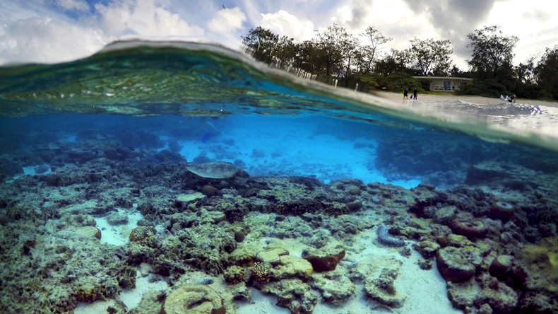 Viral spiral: 'Obituary' for embattled Great Barrier Reef slammed for hyperbole