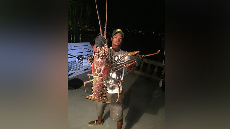 It came from Hurricane Nicole: 14lb lobster caught in Bahamas (PHOTO, VIDEO)