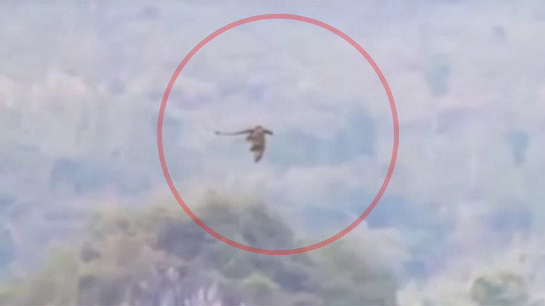 'Mysterious dragon' filmed flying through Chinese mountains (VIDEO)