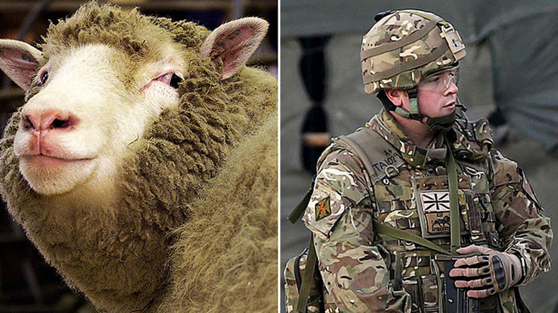 Wolves in sheep's clothing: SAS given super-strength wooly jumpers