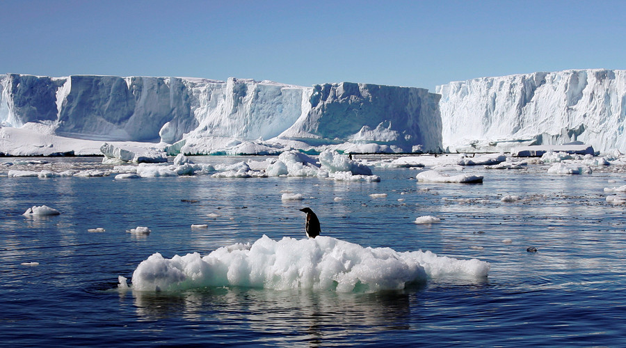 World's largest marine reserve in Antarctic gets green light