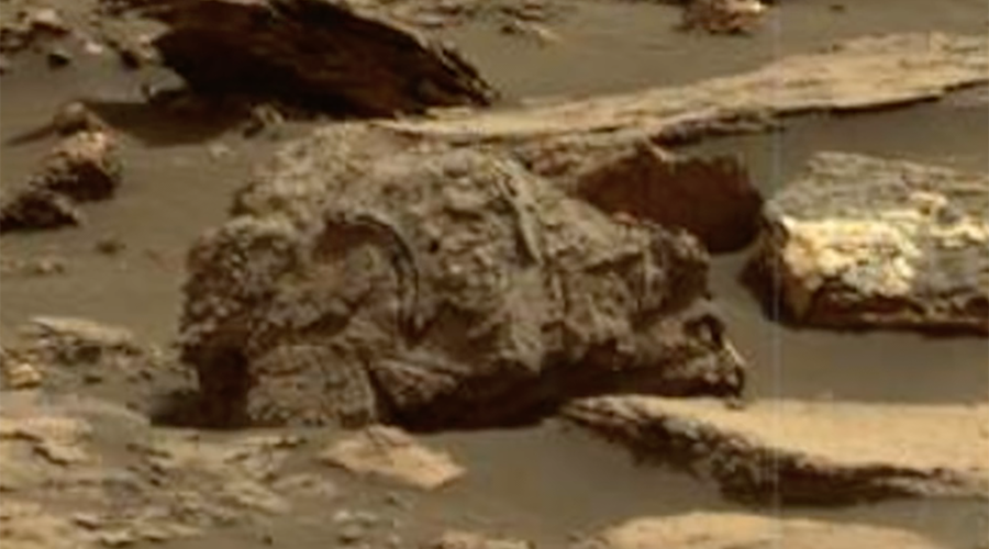 Mars 2020: 5 striking NASA images fostering hopes of finding Red Planet fossils (PHOTOS, VIDEOS)