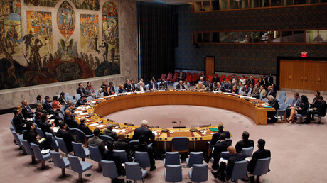 Rival resolutions on Syria sponsored by Russia & France fail at UNSC