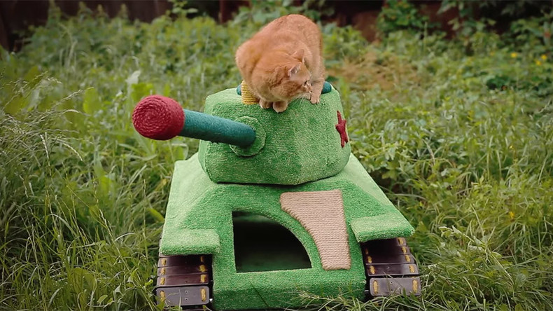 Siberian cat drives his own… tank and loves it (VIDEO)