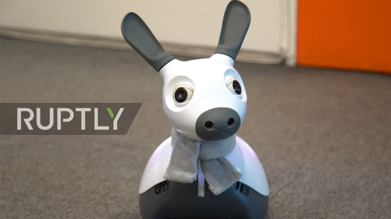 'Cognitive being': Robo-dog offers AI caring alternative (VIDEO)