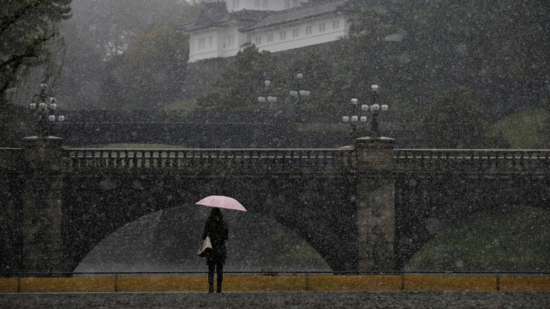 Tokyo stunned by first November snow in 54 years (PHOTOS, VIDEOS)