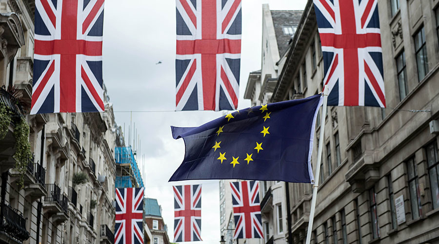 EU considers offering Brits 'voluntary citizenship'